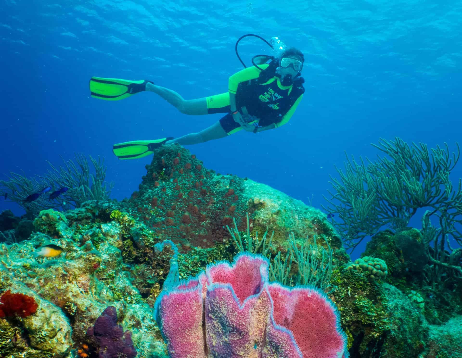 Bahamas Cruise Excursions