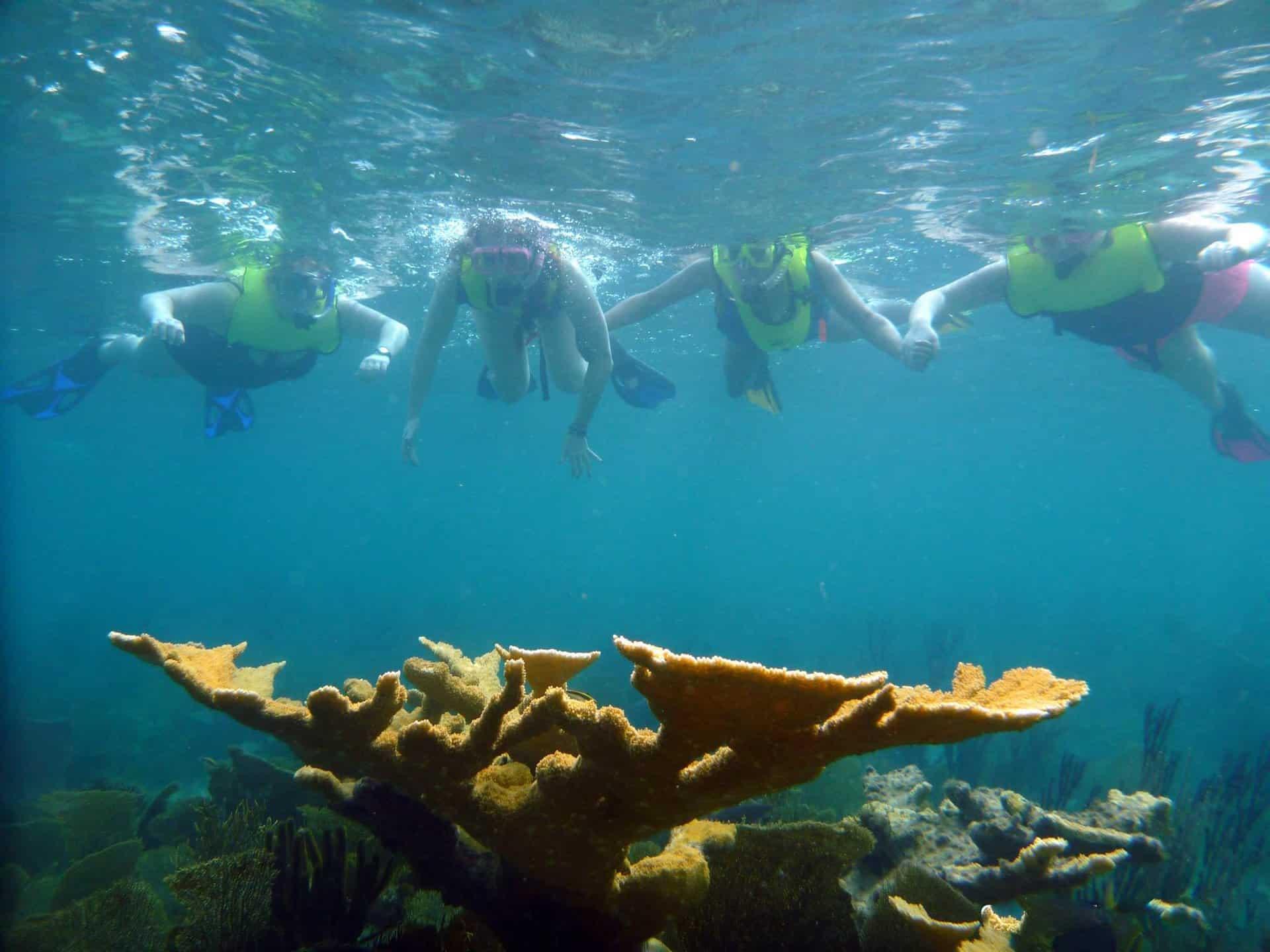 Freeport Kayak Reef Snorkeling Jamaica Cruise Excursions