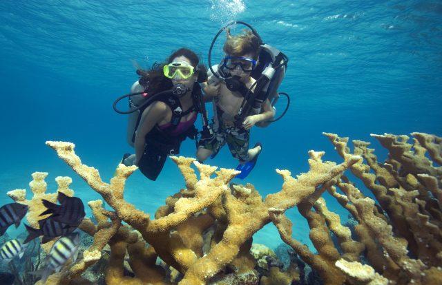 Discover Dive Nassau