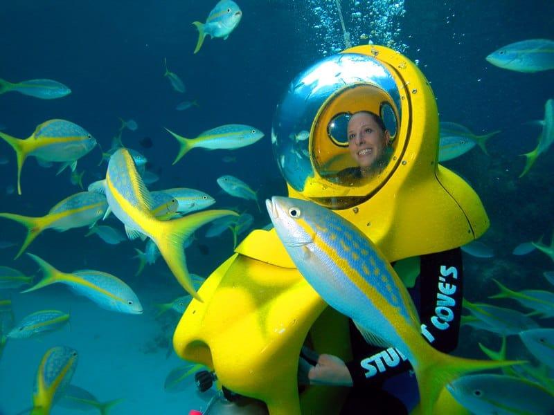 Nassau Mini Sub Fish Close Up Bahamas Cruise Excursions