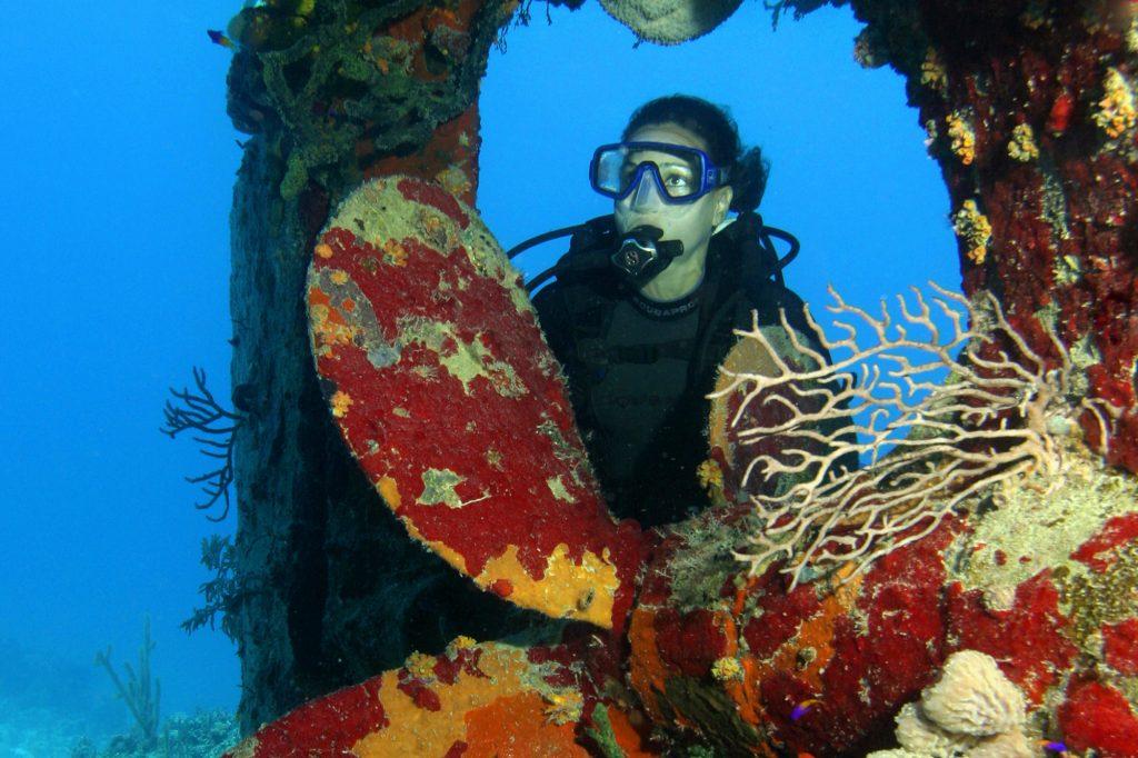 Discover Dive Reef Nassau