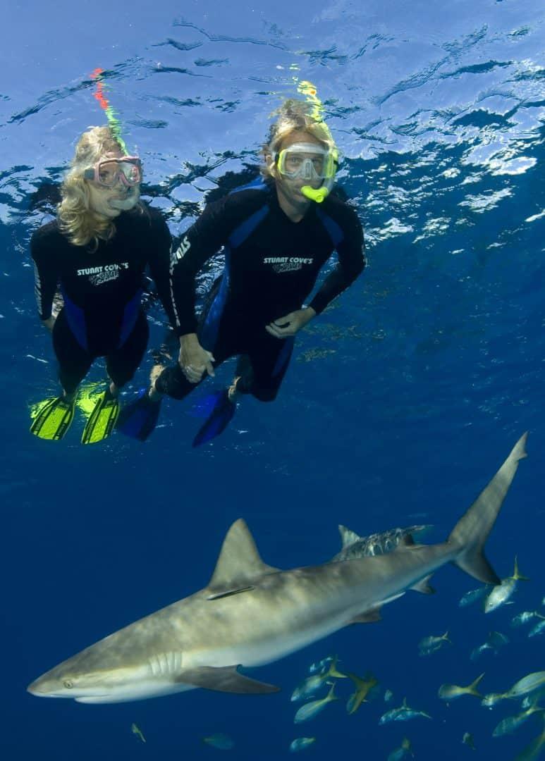 Nassau Snorkeling Tour Bahamas Cruise Excursions